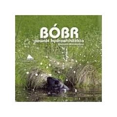 Bóbr - powrót hydroarchitekta