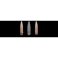 Amunicja do strzelania precyzyjnego (kulowa) SAKO WIN MAG 11.3G kal. 300 (175)